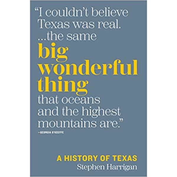 Austin & Texas Big Wonderful Thing by Stephen Harrigan HB