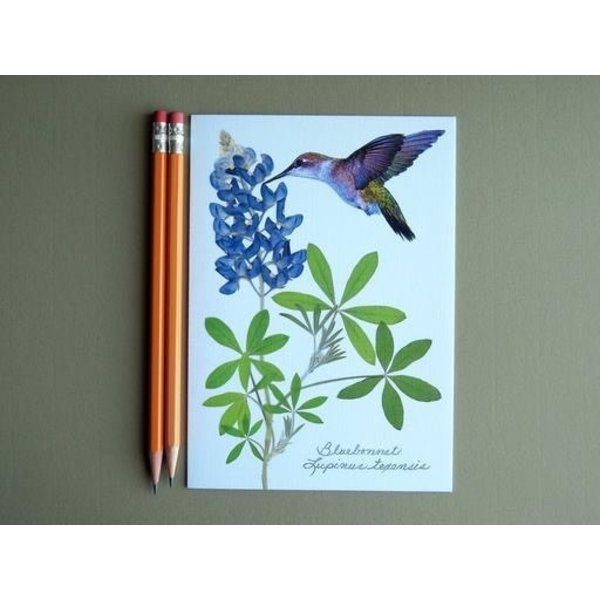 Austin & Texas Bluebonnets with Large Hummingbird Card