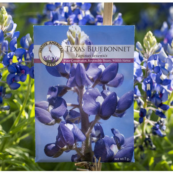 Lady Bird Johnson Bluebonnet Seeds Packet
