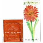 Lady Bird Johnson Teacher Bookmark w/Tea