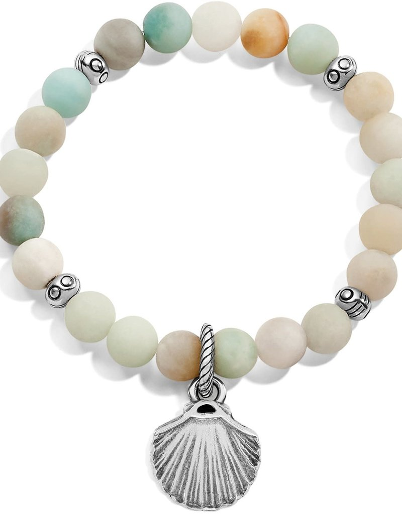 Sea Shore Shell Stretch Bracelet