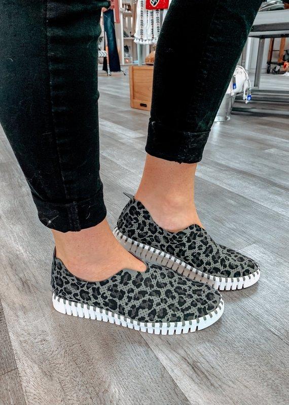 ISLE JACOBSEN Tulip Grey Leopard Print Sneakers