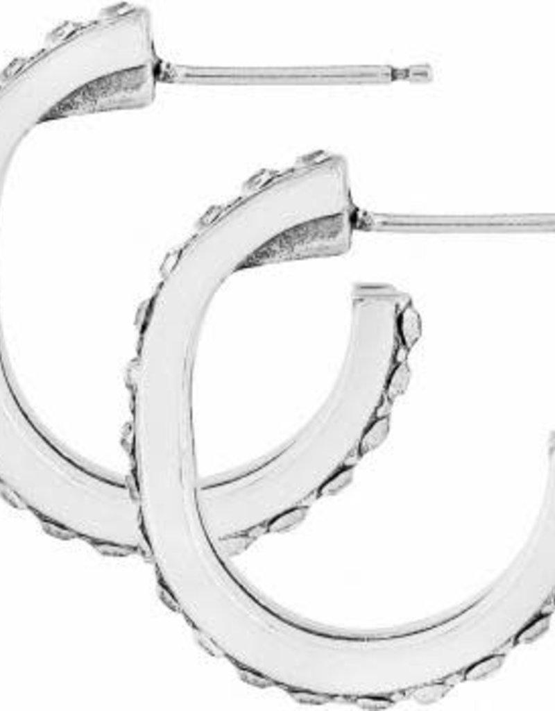Neptune's Rings Post Hoop Earrings