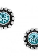 Twinkle Mini Post Earrings in Zircon