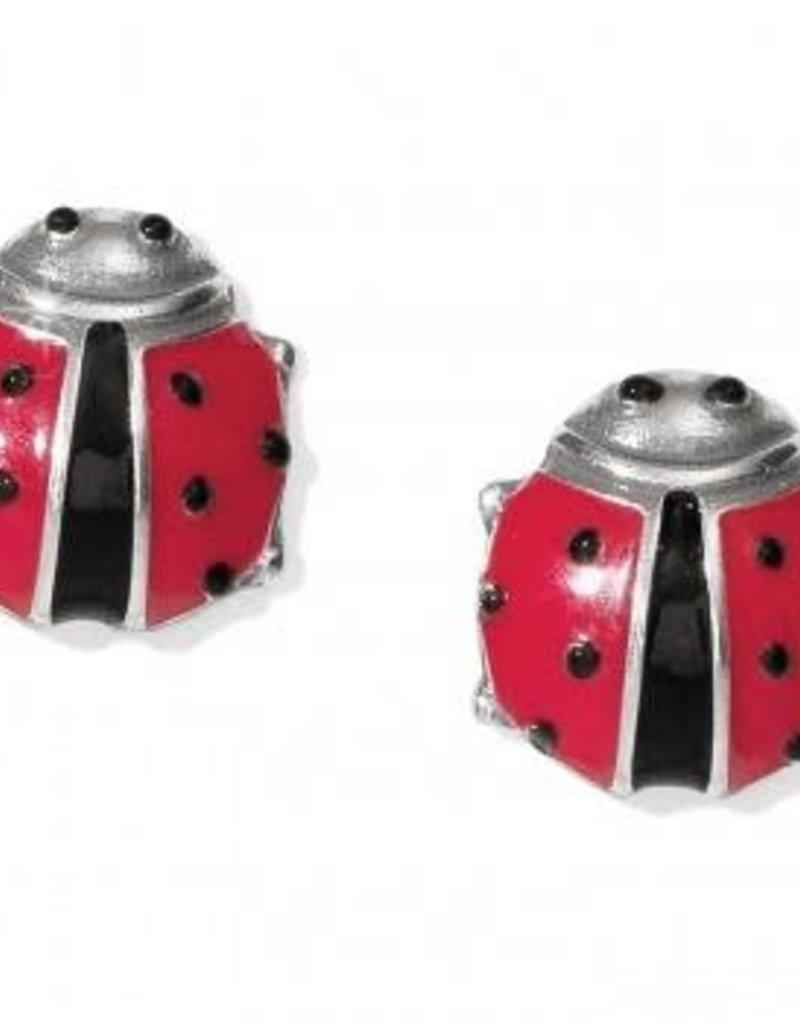 Spring Ladybug Mini Post Earrings