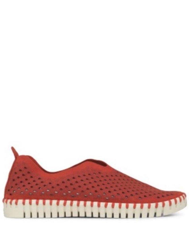 ISLE JACOBSEN Tulip Red Sneakers