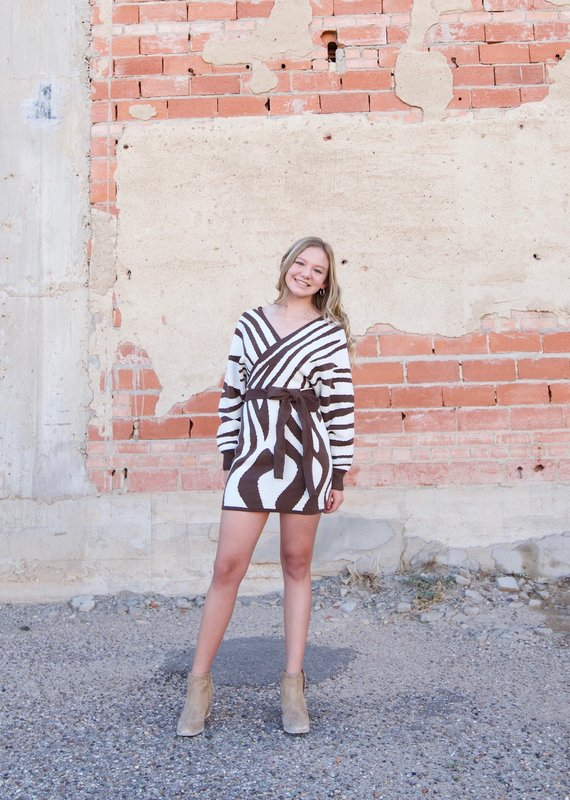 PETALROZ Zebra Wrap Sweater Dress