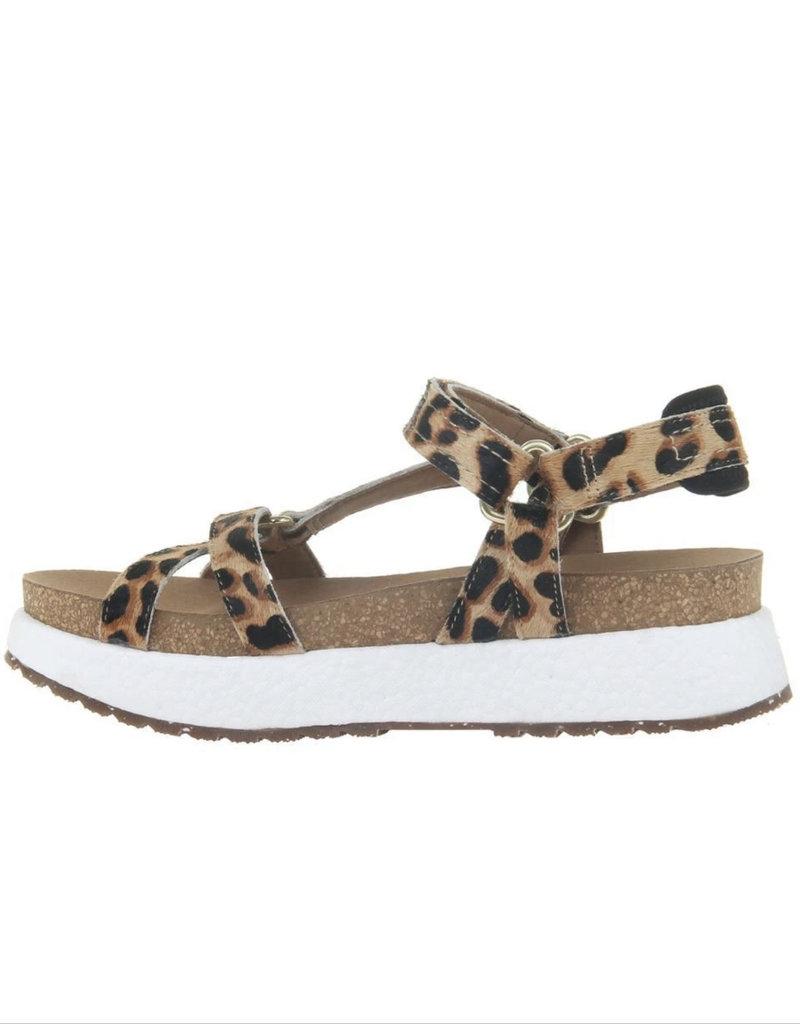 OTBT Shift Leopard Print Sandal