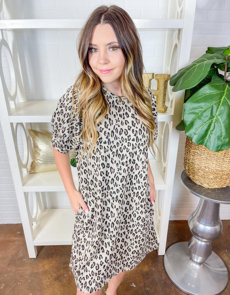 IVY JANE Leopard Knit Swing Dress
