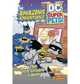 CAPSTONE - PICTURE WINDOW BOOK DC SUPER PETS YR TP ICE CREAM CAPER