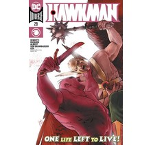 HAWKMAN #28 CVR A MIKEL JANIN