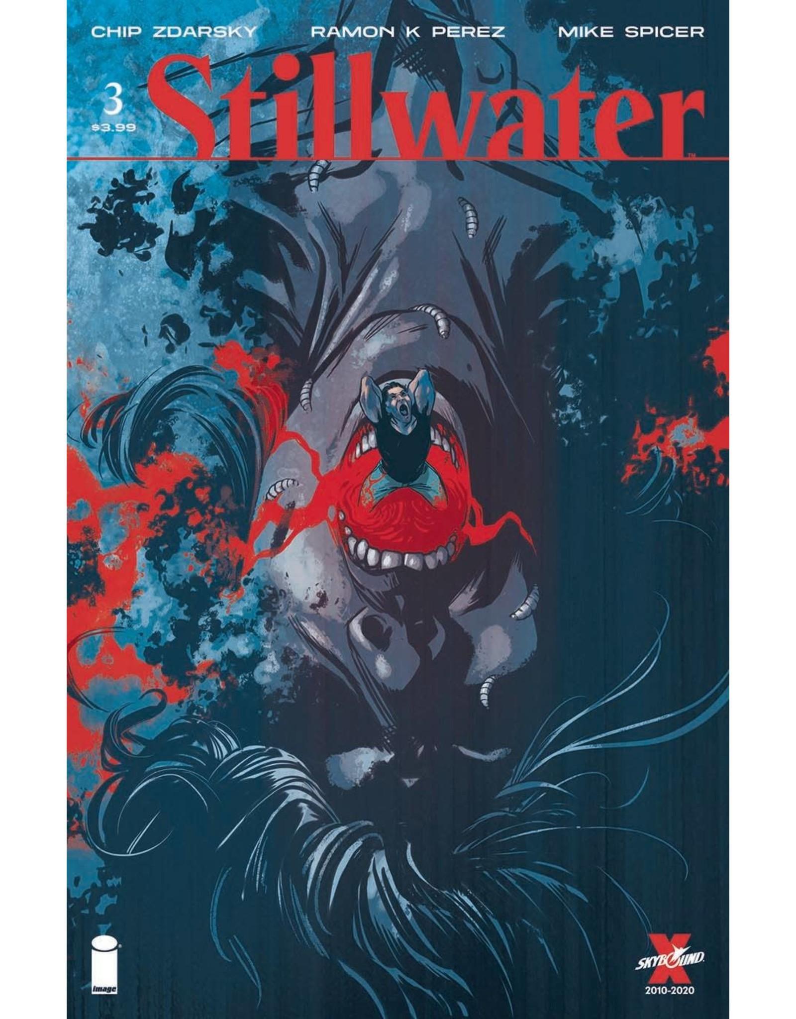 Image Comics STILLWATER BY ZDARSKY & PEREZ #3 (MR)