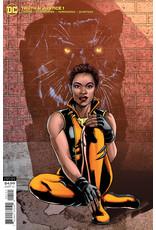 DC Comics TRUTH & JUSTICE #1 CVR B VAR