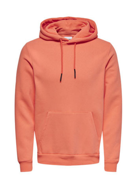 ONLY & SONS ONSCERES LIFE HOODIE SWEAT NOOS
