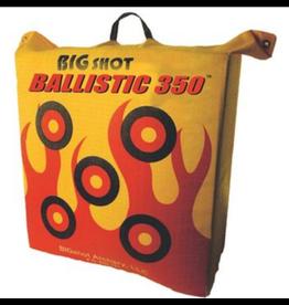 Big Shot Ballistic 350 Bag Target
