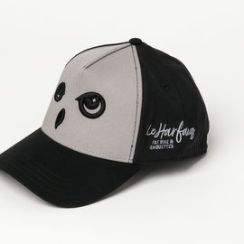 casquettes Harfang grise