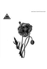 Ancient Shapes - A Flower That Wouldn't Bloom LP