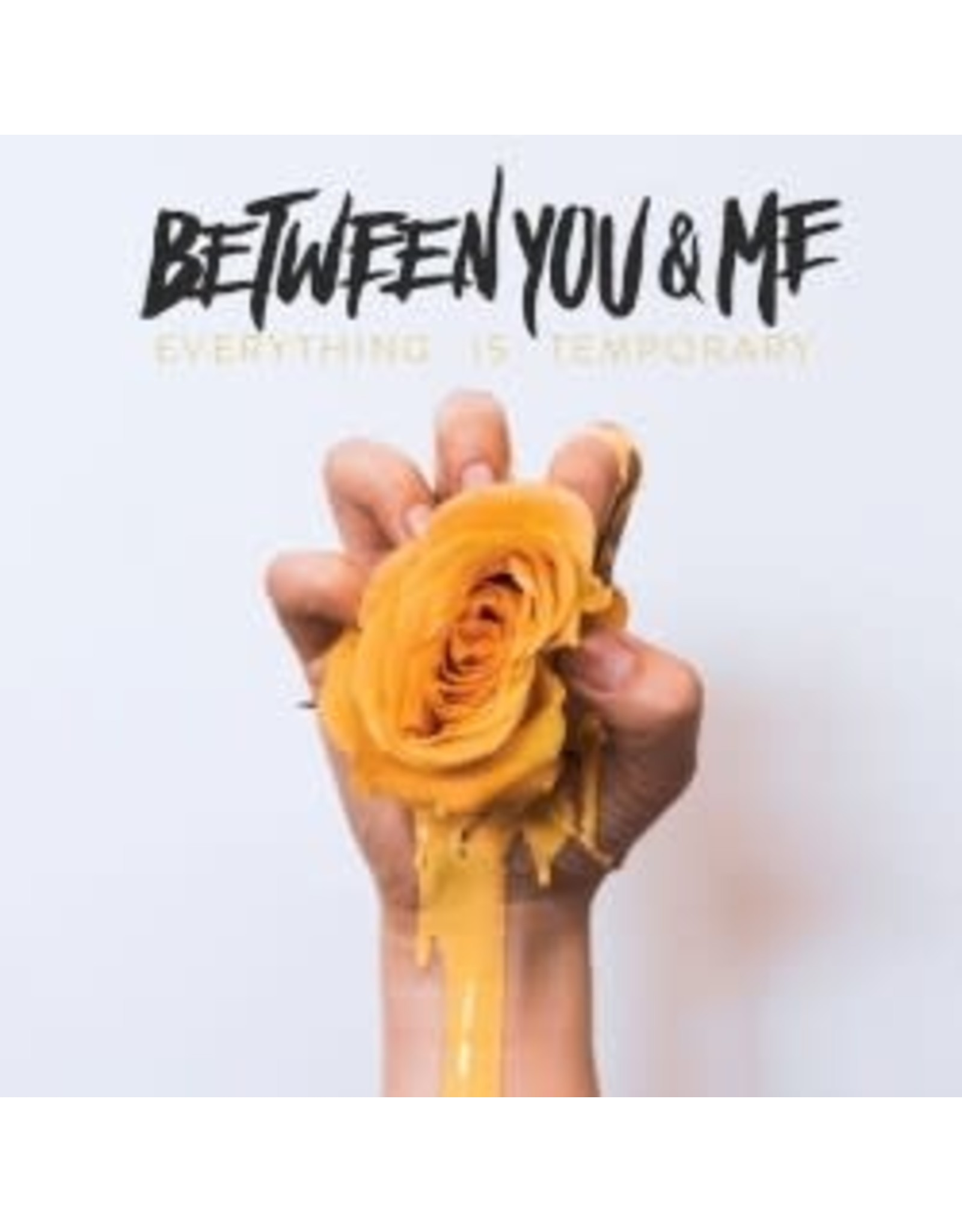 Between You and Me - Everything Is Temporary LP