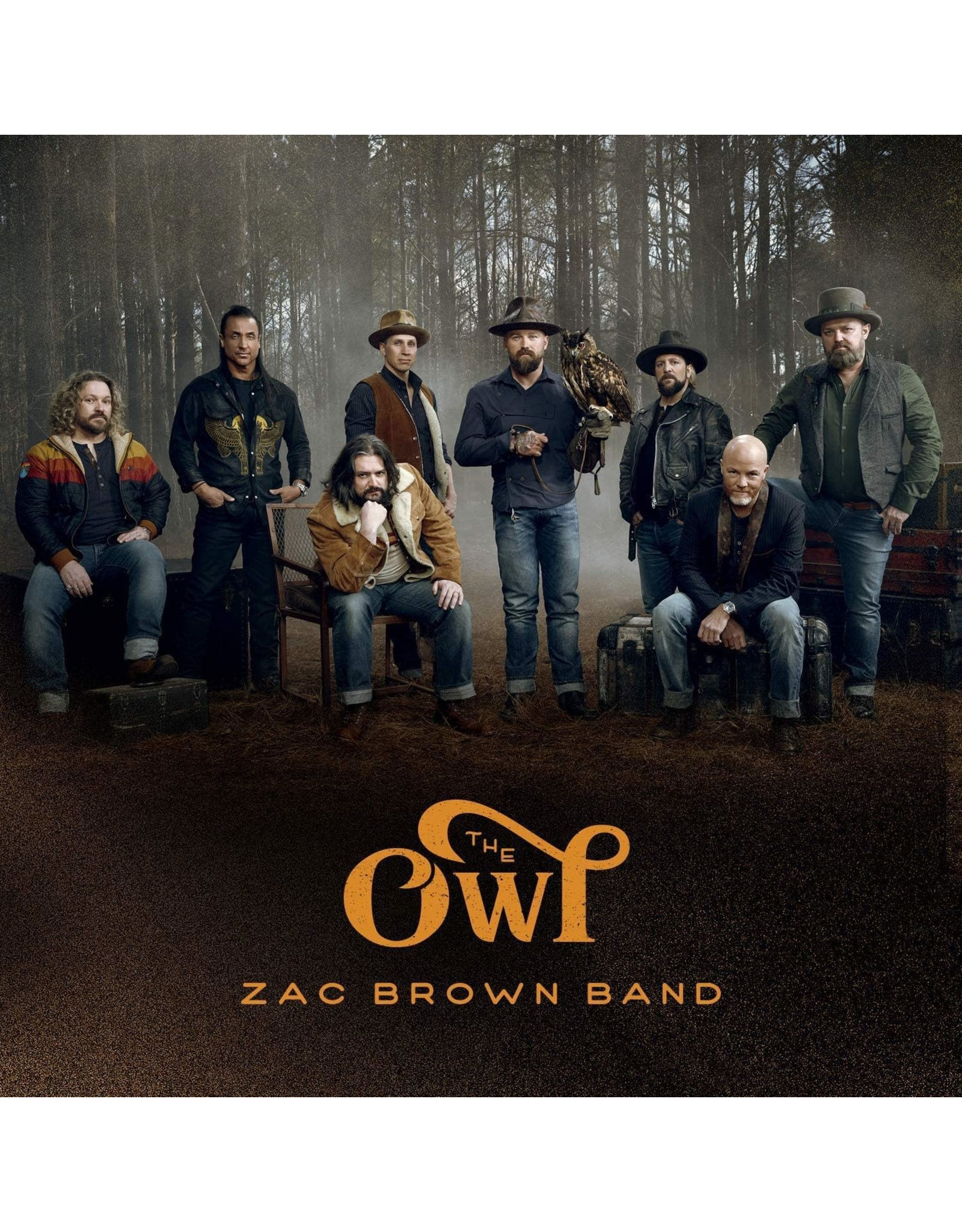 Brown, Zac Band - The Owl LP