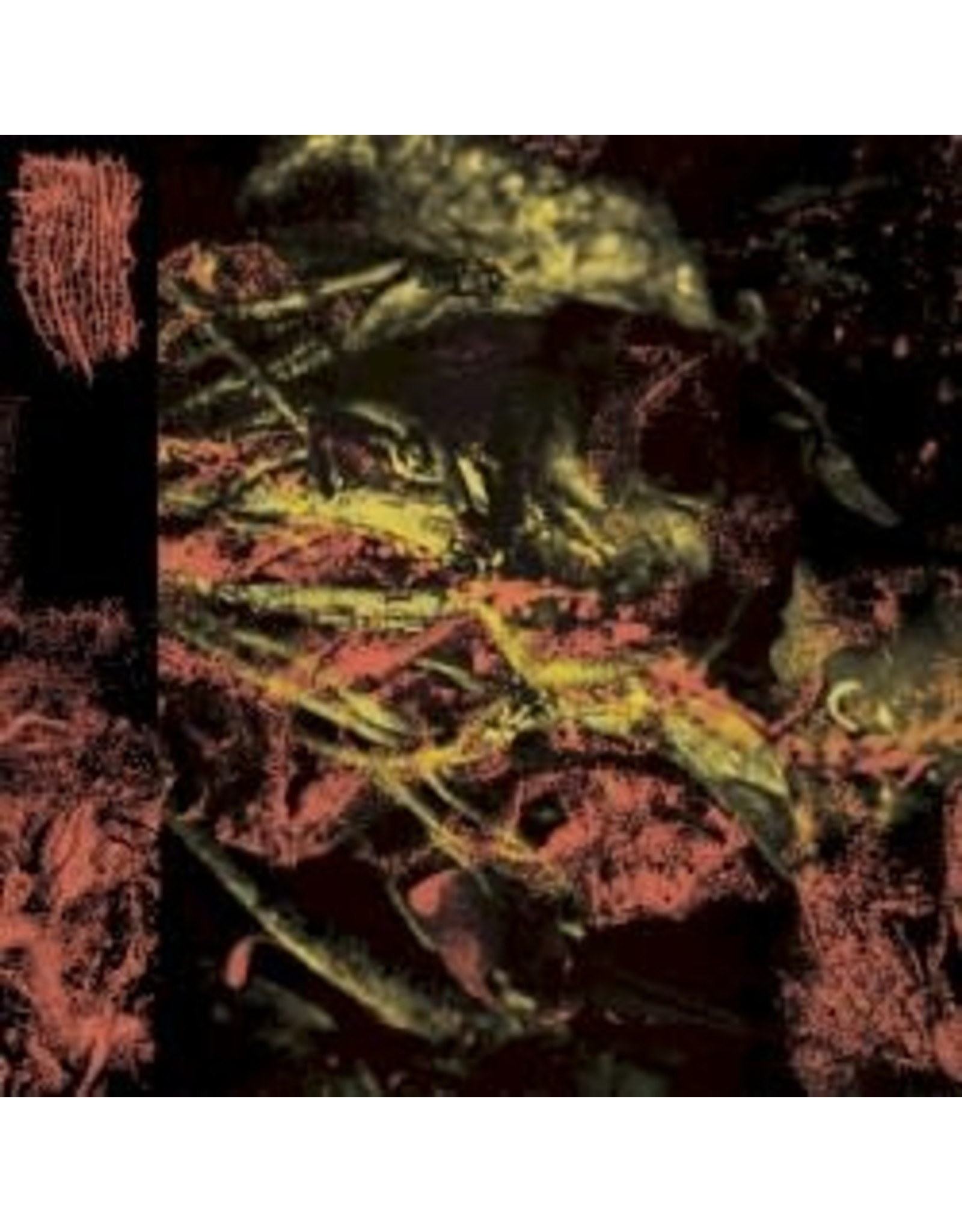Hissing - Permanent Destitution LP