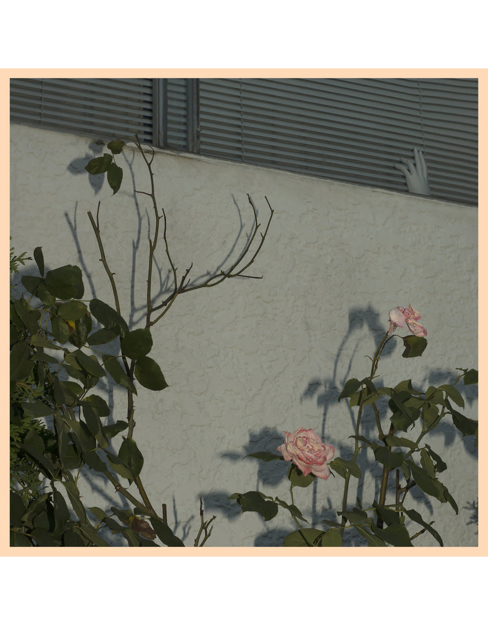 Soft Kill - Savoir LP