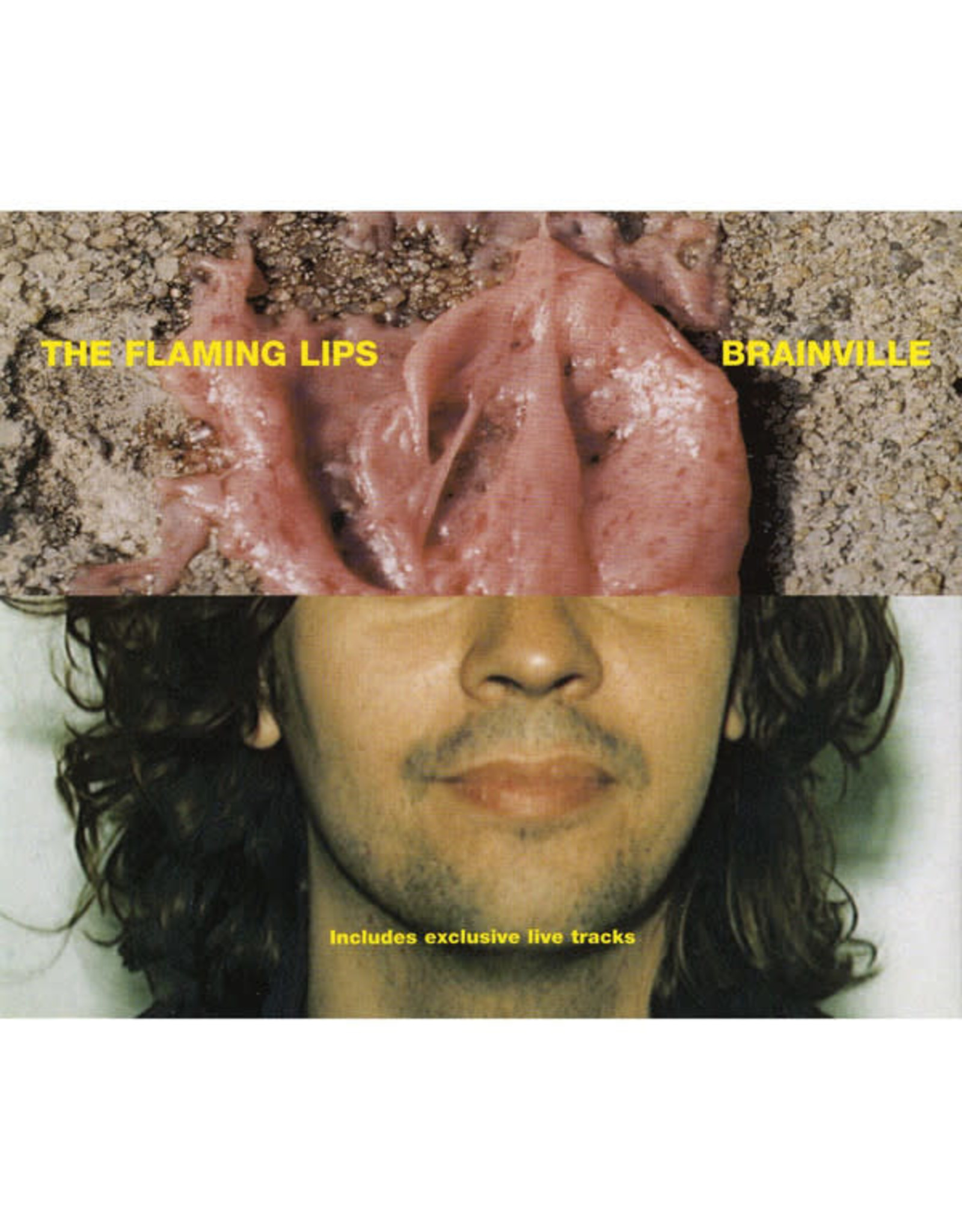 Flaming Lips, The - Brainville LP 10""