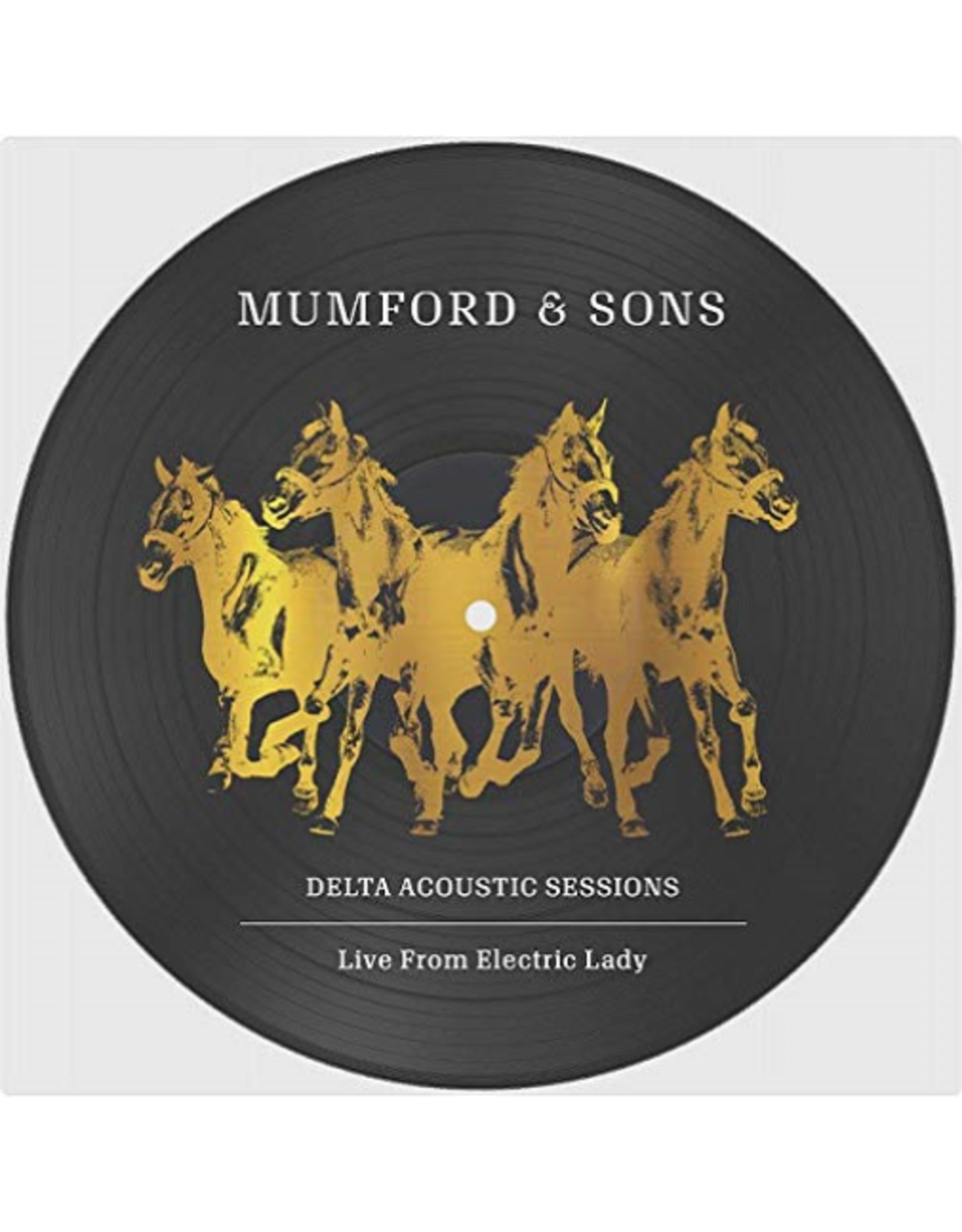 """Mumford & Sons - Delta Acoustic Sessions 10"""" Picture Disc"""