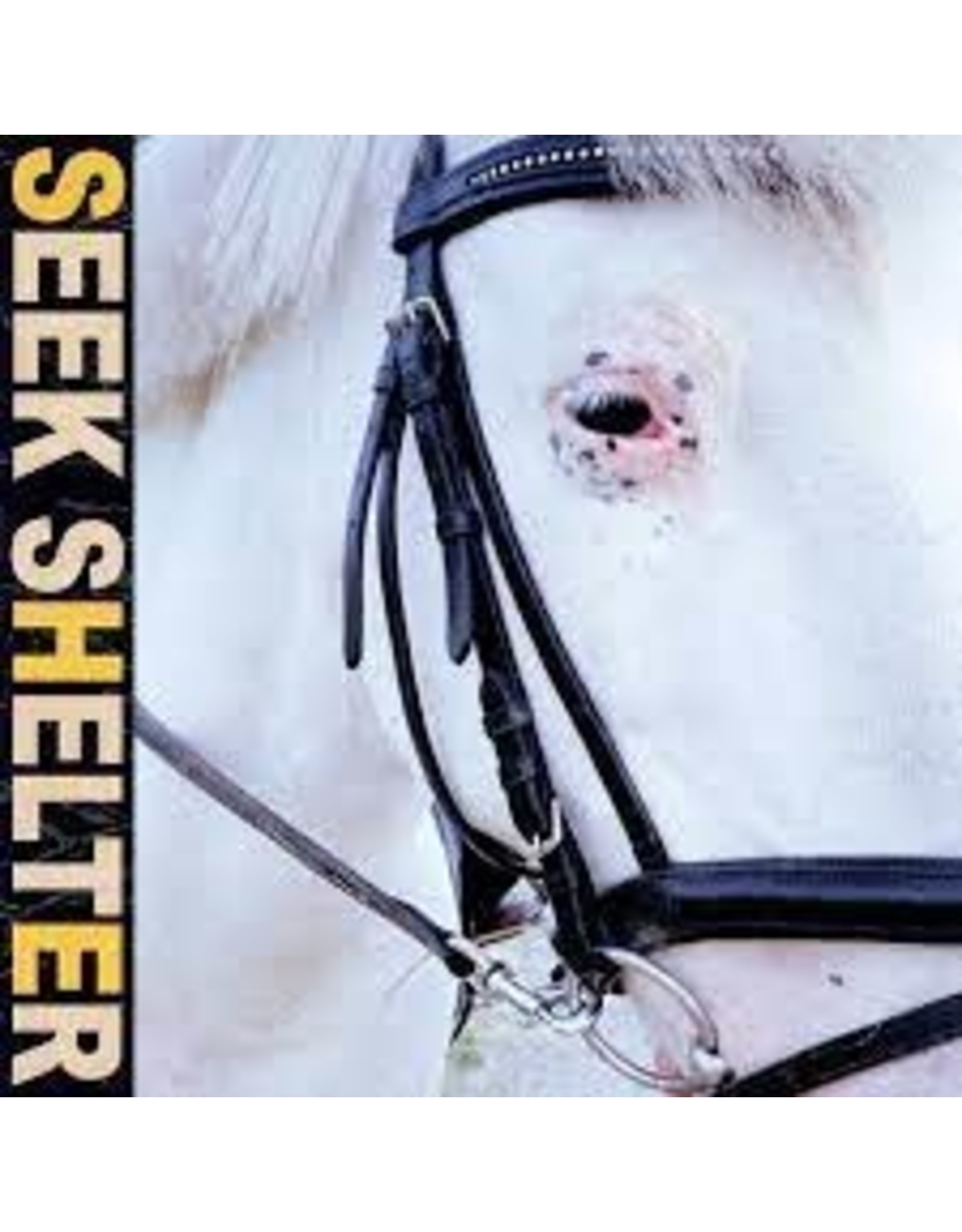 Iceage - Seek Shelter LP (Orange Vinyl)