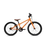 "Cleary Cleary Meerkat 24"" 5-Speed"