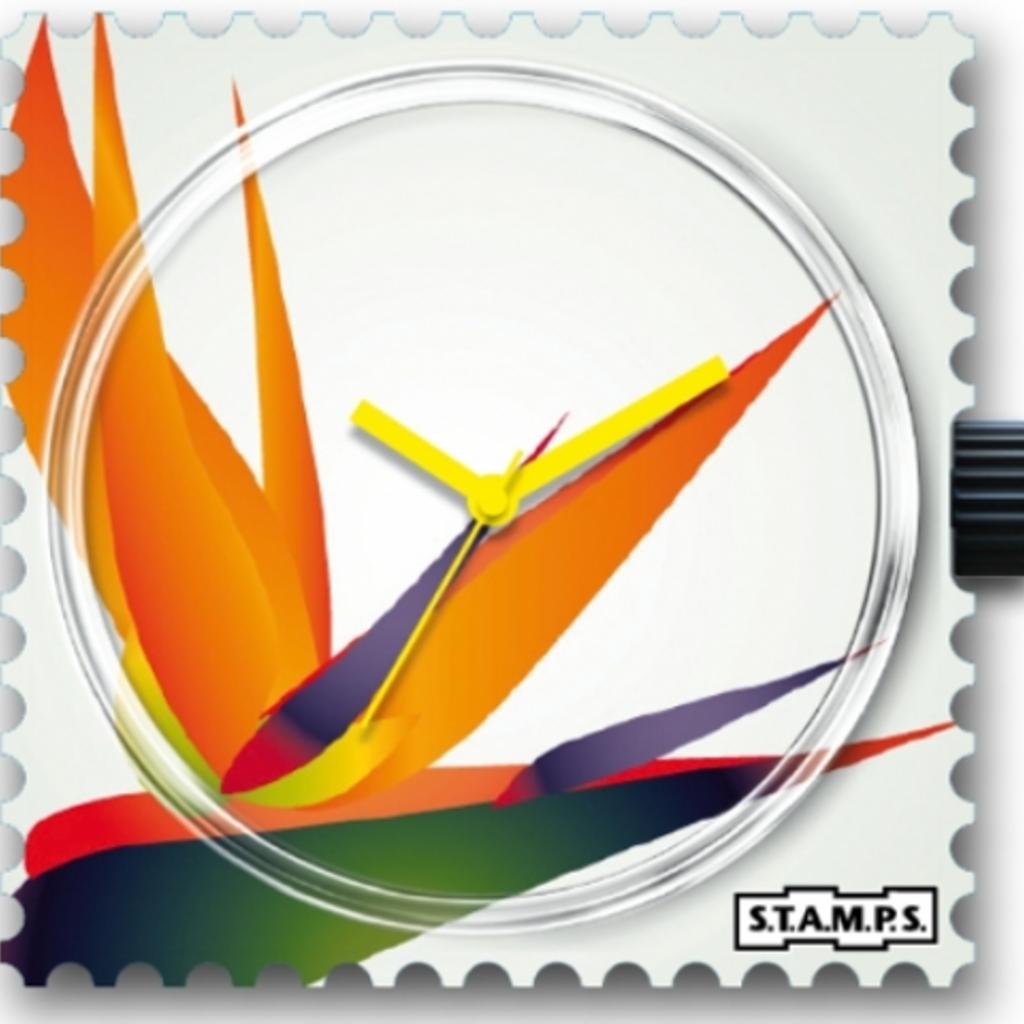 Montre Stamps MONTRE STAMPS Strelitzia