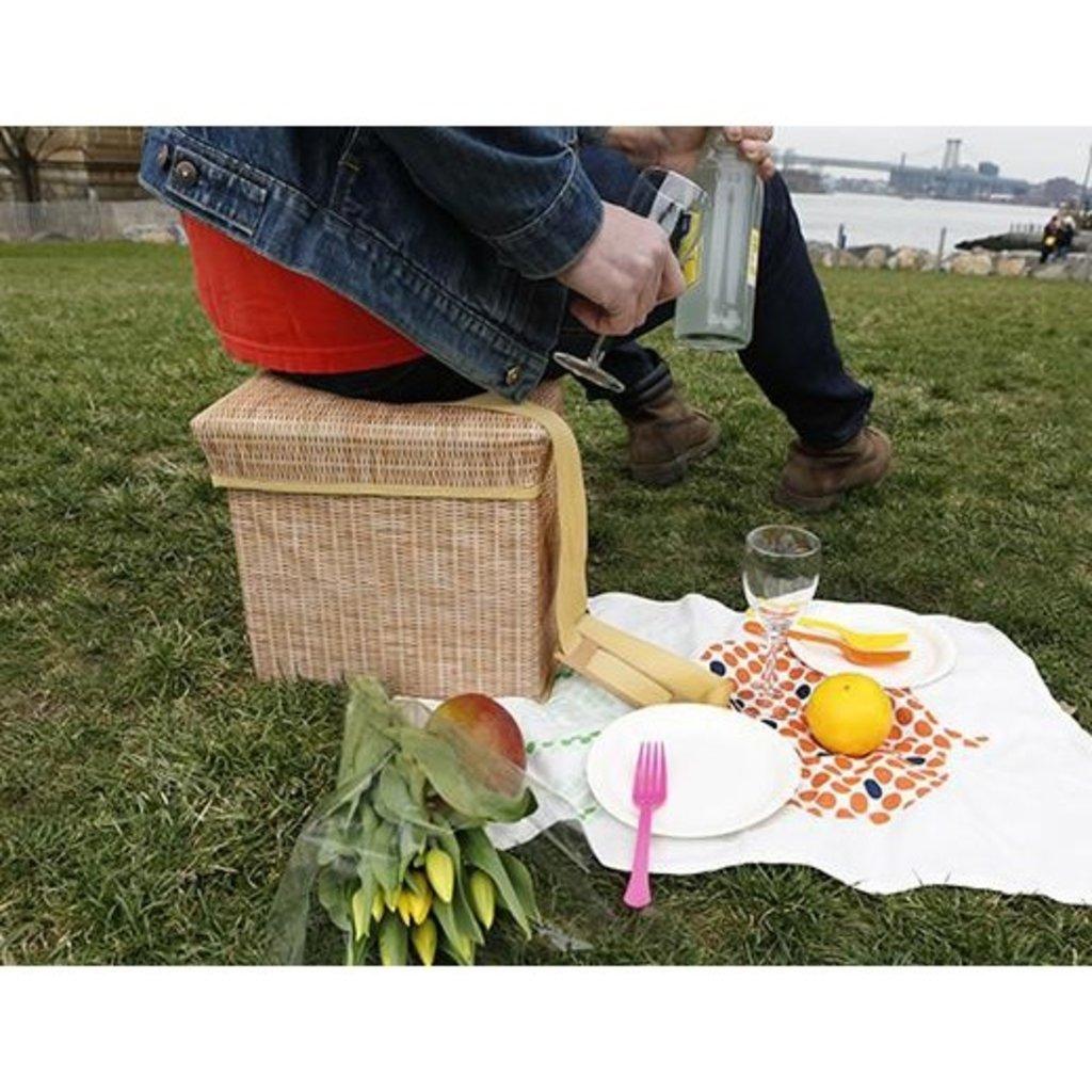Kikkerland Siège / glacière en osier wicker picnic cooler seat de Kikkerland