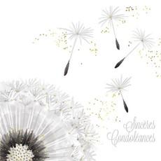 Carte de souhait sincères condoléances pissenlit