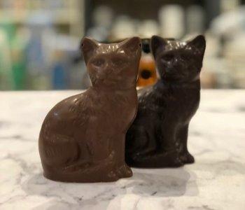 Amy le chat 100gr de chocolat noir