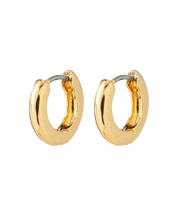 Boucles d'oreilles Native Francis or AH21