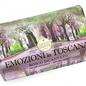 Enchanting Forest Soap