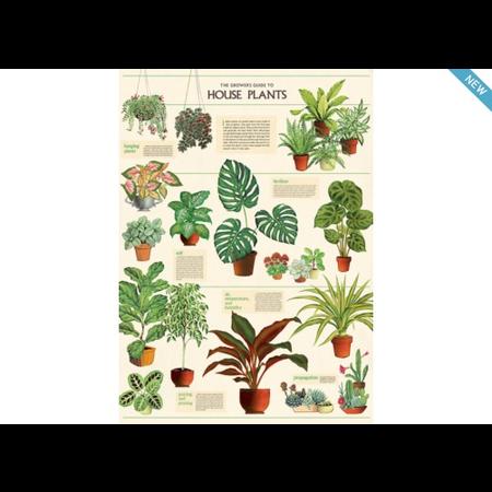 Poster/Giftwrap - Houseplants