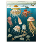 Poster/giftwrap - Jellyfish #