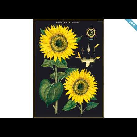 Poster/Giftwrap - Sunflower #