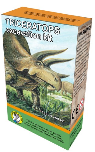 Triceratops Excavation Kit