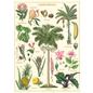 Poster/Wrap -Tropical Plants