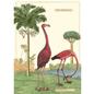 Poster/Wrap - Flamingo #