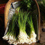 Jolly Farmer Onion Chives