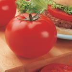 Vesey Seeds Big Beef Tomato
