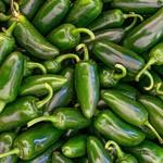 Vesey Seeds Jalapeño Pepper