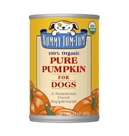 Nummy Tum Tum Nummy Tum Tum Organic Pumpkin 15oz
