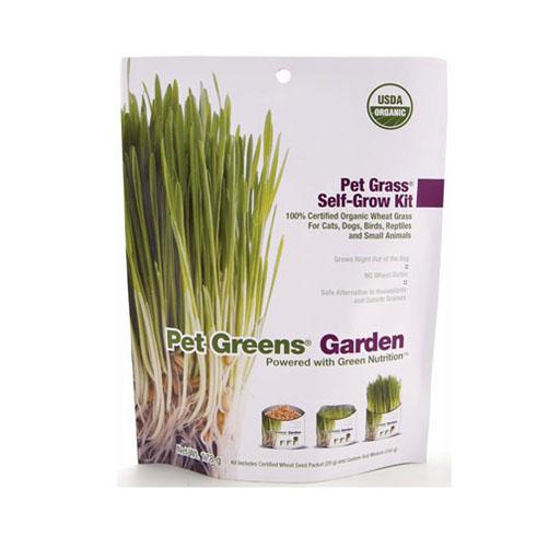 Bellrock Pet Greens Pet Greens Garden Self Grow Kit 113g