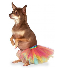 Rubies Rubies Pet Rainbow Tutu S/M
