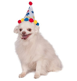 Rubies Rubies Paw Print Birthday Hat Boy S/M