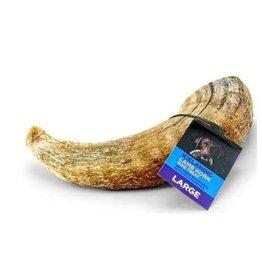 """Icelandic+ Icelandic+ Lamb Horn Large 6.5-7.3"""" (per piece)"""