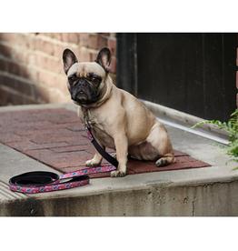RC Pet RC Pets Dog Leash